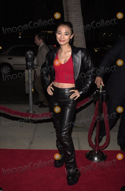 Bai Ling Photo -  Bai Ling at the premiere of Sony Pictures Classics Crouching Tiger Hidden Dragon in Beverly Hills  12-05-00