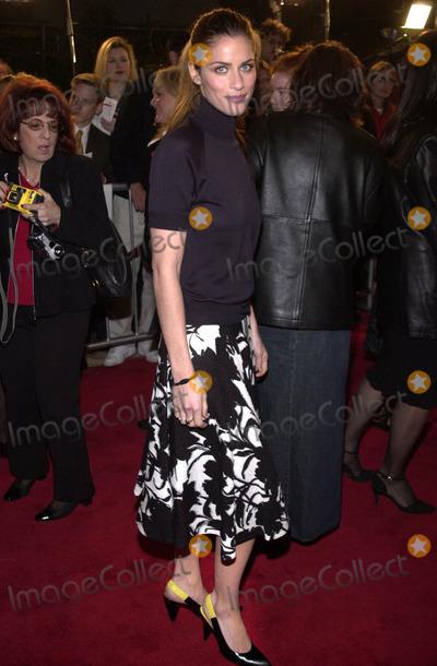 Amanda Peet Photo -  Amanda Peet at the premiere of Columbia Pictures Saving Silverman at Manns Village Theater Westwood 02-07-01