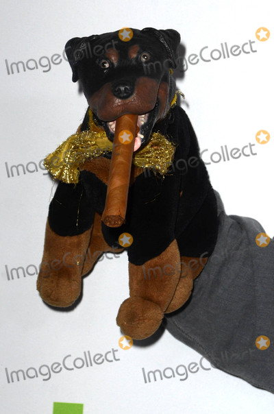 Triumph The Insult Comic Dog Photo - Triumph The Insult Comic Dogat the HULU TCA 2016 Red Carpet Beverly Hilton Beverly Hills CA 08-05-16