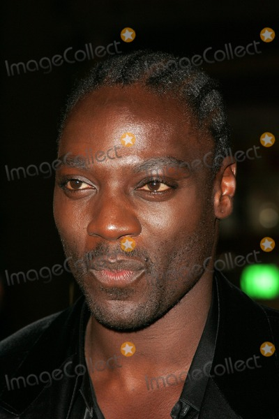 Adewale Akinnuoye-Agbaje Photo - Adewale Akinnuoye-Agbajeat the world premiere of Get Rich Or Die Tryin Graumans Chinese Theatre Hollywood CA 11-02-05