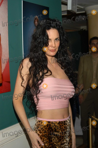 Julie Strain Photo - Julie Strain at Harry Langdon Photo-Art Show for the Benifit of Aid for Aids Foundation Beverly Hills Country Club Los Angeles Calif 05-21-03