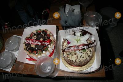 Ashley Peldon Photo - Birthday Cakesat Courtney and Ashley Peldons birthday party Area West Hollywood CA 03-31-07