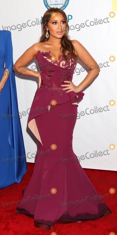 Adrienne Bailon Photo - LOS ANGELES - FEB 11  Adrienne Bailon at the 48th NAACP Image Awards Arrivals at Pasadena Conference Center on February 11 2017 in Pasadena CA