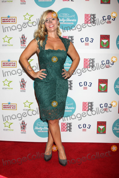 Amy Hedrick Photo - LOS ANGELES - AUG 17  Amy Hedrick at the HollyShorts Film Festival  at the TCL Chinese 6 Theaters on August 17 2013 in Los Angeles CA