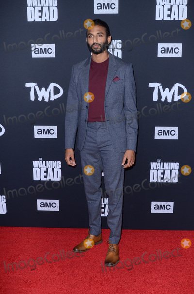 Avi Nash Photo - LOS ANGELES - SEP 23  Avi Nash at the The Walking Dead Season 10 Premiere Event at the TCL Chinese Theater on September 23 2019 in Los Angeles CA