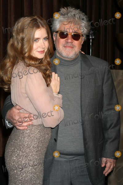 Cecil B DeMille Photo - LOS ANGELES - NOV 9  Amy Adams Pedro Almodovar at the CECIL B DEMILLE AWARD Honoree Announcement at Beverly Hilton Hotel on November 9 2011 in Beverly Hills CA