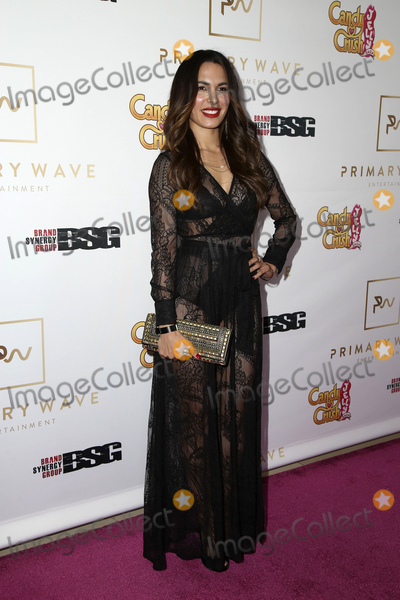 Nadine Velasquez Photo - LOS ANGELES - FEB 14  Nadine Velasquez at the Primary Wave 10th Annual Pre-GRAMMY Party at the London West Hollywood on February 14 2016 in West Hollywood CA