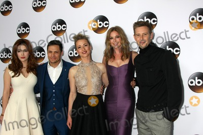 Nick Wechsler Photo - LOS ANGELES - JAN 14  Elena Satine Nick Wechsler Karine Vanasse Emily VanCamp Gabriel Mann at the ABC TCA Winter 2015 at a The Langham Huntington Hotel on January 14 2015 in Pasadena CA