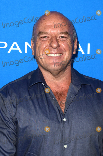 Sting Photo - LOS ANGELES - JUL 19  Dean Norris at the Oceana Presents Sting Under The Stars at the Private Home on July 19 2016 in Los Angeles CA