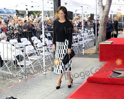 Annabeth Gish Photo - LOS ANGELES - JAN 8  Annabeth Gish at the Gillian Anderson Star Ceremony on the Hollywood Walk of Fame on January 8 2018 in Los Angeles CA