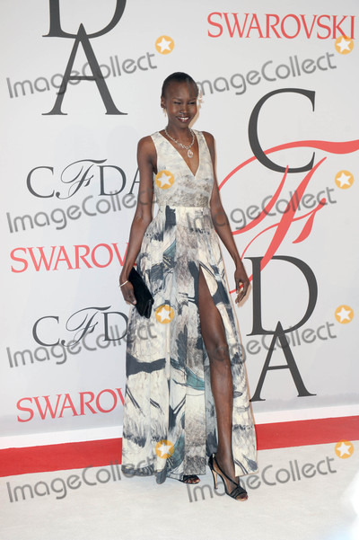 Alec Wek Photo - Photo by GWRstarmaxinccomSTAR MAX2015ALL RIGHTS RESERVEDTelephoneFax (212) 995-11966115Alec Wek at the 2015 CFDA Fashion Awards(NYC)