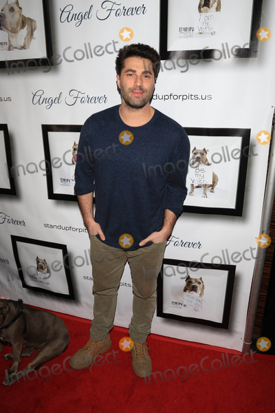 Adam Ray Photo - Photo by gotpapstarmaxinccomSTAR MAX2017ALL RIGHTS RESERVEDTelephoneFax (212) 995-119611517Adam Ray at The 7th Annual Stand Up For Pits in Los Angeles CA