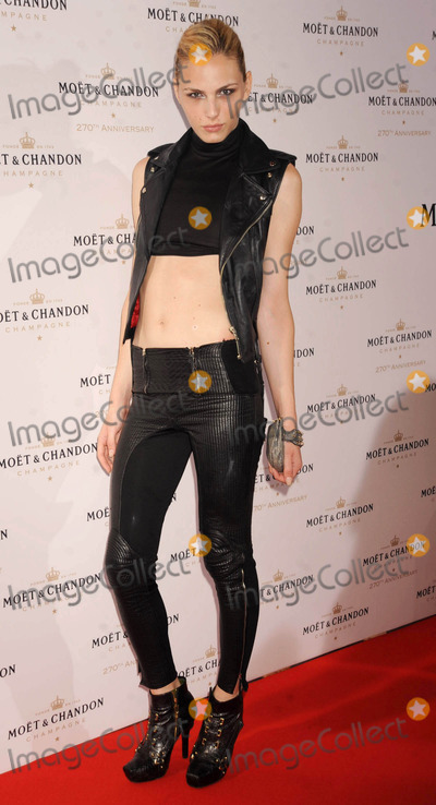 Andrej Pejic Photo - Photo by Demis Maryannakisstarmaxinccom2013ALL RIGHTS RESERVEDTelephoneFax (212) 995-119682013Andrej Pejic at the Moet  Chandon 270th Anniversary Celebration(NYC)
