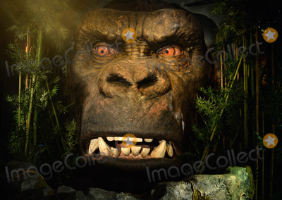 King Kong Photo - Photo by Dennis Van TinestarmaxinccomSTAR MAX2017ALL RIGHTS RESERVEDTelephoneFax (212) 995-11963717King Kongs head and Tom Hiddleston join Madame Tussauds New York - Kong Skull Island Experience opens at Madame Tussauds New York offering an immersive multi-sensory experience featuring an 18ft animatronic King Kong head featuring over 350-square-feet of specialist faux hair and the first-ever figure of actor Tom Hiddleston  Kong Skull Island is released in theaters from FridayLocation Madame Tussauds New York