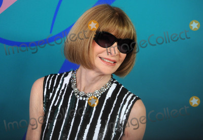 Anna Wintour Photo - Photo by Dennis Van TinestarmaxinccomSTAR MAX2017ALL RIGHTS RESERVEDTelephoneFax (212) 995-11966517Anna Wintour at The 2017 CFDA Fashion Awards in New York City