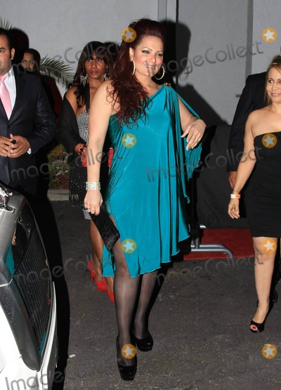 Ana Carolina da Fonseca Photo - Rapper Pitbull (aka Armando Christian Perez) celebrates his 30th birthday at Play nightclub with friends that included Mexican pop singer Cristian Castro former Major League Baseball player Sammy Sosa Brazilian-born actress Ana Carolina da Fonseca who surprised Pitbull when she walked out of a giant faux cake and Latin pop singer and actor Jencarlos Canela  Pitbull appeared to be in a great mood as he kissed and hugged Ana Carolina stuck out his tongue and posed with a comical sculpture of himself Pictured Sammy Sosas wife Sonia Sosa Miami FL 011511