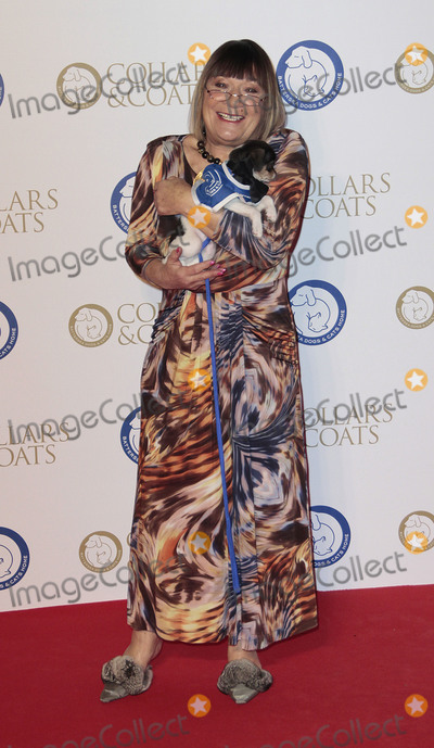 Hilary Alexander Photo - Nov 07 2013 - London England UK - The annual Collars and Coats gala ball in aid of Battersea Dogs  Cats home at Battersea EvolutionPictured Hilary Alexander