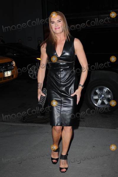 Brooke Shields Photo - March 30 2015 New York CityBrooke Shields attending Woman in Gold Screening at the MoMa on March 30 2015 in New York City By Line Kristin CallahanACE PicturesACE Pictures Inctel 646 769 0430