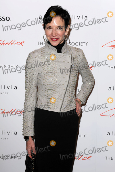 Amy Fine Collins Photo - January 22 2014 New York CityAmy Fine Collins attending a Roadside Attractions  Day 28 Films with The Cinema Society screening of Gimme Shelter at Museum of Modern Art on January 22 2014 in New York City