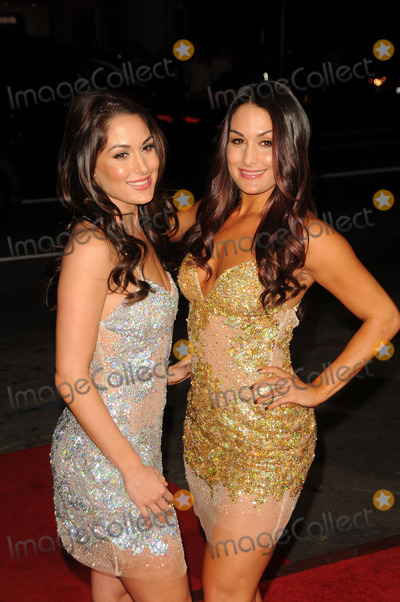Nikki Bella Photo - Brie Bella and Nikki Bella arriving at the This Means War  premiere at Graumans Chinese Theatre on February 8 2012 in Hollywood California