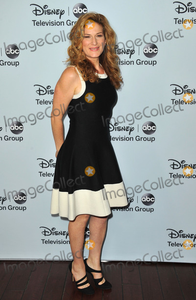 Ana Gasteyer Photo - January 17 2014 LAAna Gasteyer arriving at the ABCDisney TCA Winter Press Tour party at The Langham Huntington Hotel and Spa on January 17 2014 in Pasadena California