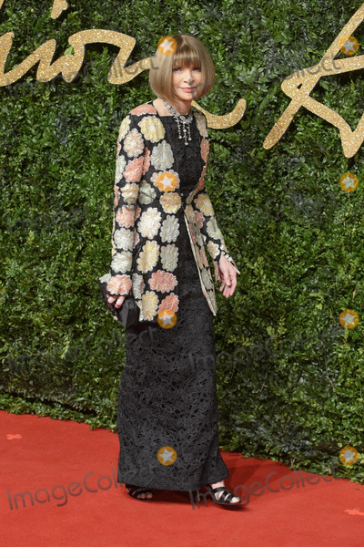 Anna Wintour Photo - Anna Wintour at the British Fashion Awards 2015 at the Coliseum Theatre LondonNovember 23 2015  London UKPicture Dave Norton  Featureflash