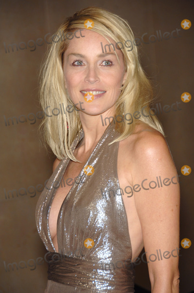 Sharon Stone Photo - SHARON STONE at the 17th Carousel of Hope Ball to Benefit the Barbara Davis Center for Childhood Diabetes at the Beverly Hills Hilton October 28 2006  Los Angeles CAPicture Paul Smith  Featureflash