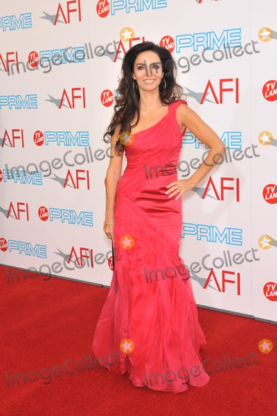 Claudia Ohana Photo - Claudia Ohana at the 37th AFI Life Achievement Award Gala at Sony Studios Los Angeles where Michael Douglas was honored with the AFIs Life Achievement AwardThe show will air in the US on TV Land Prime on July 19thJune 11 2009  Los Angeles CAPicture Paul Smith  Featureflash