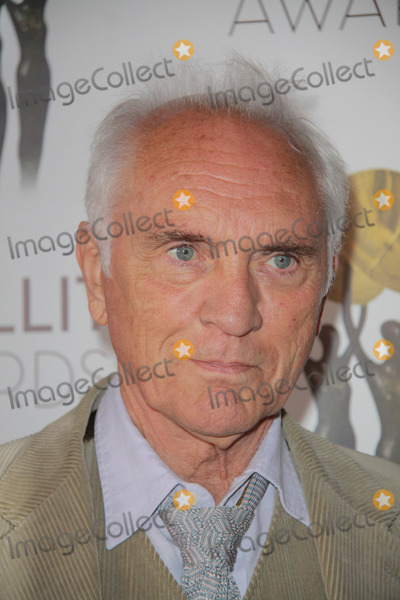 Terence Stamp Photo - Terence Stamp12162012 The 17th Annual Satellite Award held at the InterContinental Los Angeles Century City Hotel in Los Angeles CA Photo by Mayuka Ishikawa  HollywoodNewsWirenet