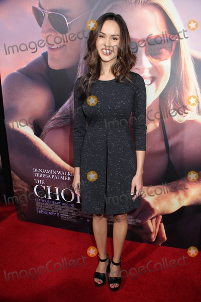 Anna Enger Photo - Anna Enger 02012016 The Los Angeles special Screening The Choice held at Arclight Hollywood in Los Angeles CA Photo by Izumi Hasegawa  HollywoodNewsWirenet