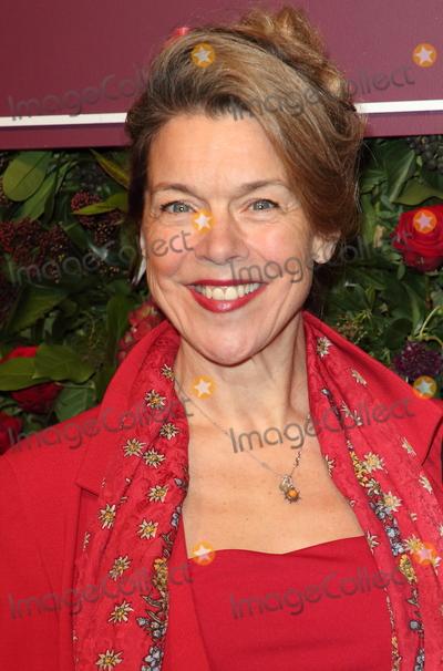 Janie Dee Photo - London UK  Janie Dee at the 65th Evening Standard Theatre Awards London Coliseum London England on the 24th  November 2019Ref LMK73-S2621-251119Keith MayhewLandmark MediaWWWLMKMEDIACOM