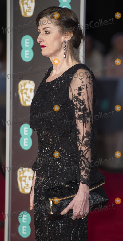 Amanda Berry Photo - London UK Amanda Berry at EE British Academy Film Awards 2018 - Red Carpet Arrivals at the Royal Albert Hall London on Sunday February 18th 2018 Ref LMK386 -J1597-190218Gary MitchellLandmark Media WWWLMKMEDIACOM
