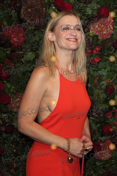 Anne-Marie Duff Photo - London UK Anne-Marie Duff at the 65th Evening Standard Theatre Awards London Coliseum London England on the 24th  November 2019Ref LMK73-S2621-251119Keith MayhewLandmark MediaWWWLMKMEDIACOM