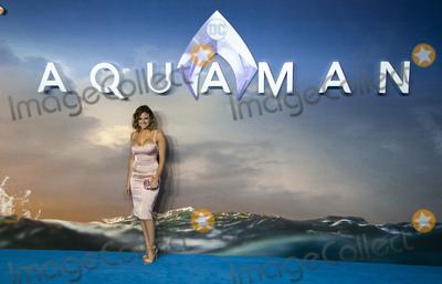 Camilla Thurlow Photo - London UK  Camilla Thurlowat the World Premiere of Aquaman at Cineworld Leicester Square on November 26 2018 in London EnglandRef LMK386-J3028-271118Gary MitchellLandmark MediaWWWLMKMEDIACOM