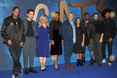 Jennifer Hudson Photo - London UK Larry Bourgeois Laurie Davidson Rebel Wilson Jennifer Hudson Ian McKellen Francesca Hayward Jason Derulo Robbie Fairchild and Laurent Bourgeois at the Cats film photocall held at Corinthia Hotel London13 December 2019Ref LMK73-MB5051-131219WWWLMKMEDIACOM Keith Mayhew  Landmark Media