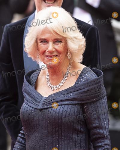 Albert Hall Photo - London UK  Camilla Duchess of Cornwall at The Olivier Awards 2019 with Mastercard at Royal Albert Hall on April 7 2019 in London England 7th April 2019Ref LMK386-J4701-080419Gary MitchellLandmark MediaWWWLMKMEDIACOM