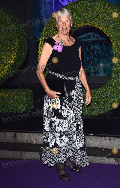 Anne Jones Photo - London UK 060714Ann Jones at The Wimbledon Champions Dinner held at The Royal Opera House  London6 July  2014 Ref LMK392-49011-070714Vivienne VincentLandmark Media WWWLMKMEDIACOM