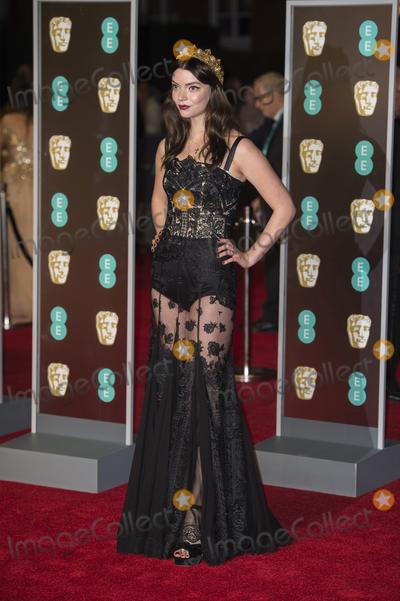 Anya Taylor-Joy Photo - London UK 180218Anya Taylor-Joy at the EE British Academy Film Awards (BAFTA) held at Royal Albert HallRef LMK386 -MB1160-190218Gary MitchellLandmark Media WWWLMKMEDIACOM