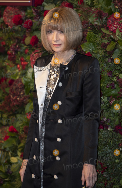 Anna Wintour Photo - London UKDame Anna Wintour  at the 65th Evening Standard Theatre Awards London Coliseum London England on the 24tht November 2019Ref LMK386-J5854-251119Gary MitchellLandmark MediaWWWLMKMEDIACOM