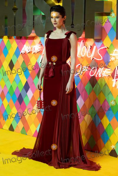 Elizabeth Winstead Photo - London England Mary Elizabeth Winstead  at the World Premiere of Birds Of Prey held at BFI IMAX London29 January 2020Ref LMK370-MB5020-300120Justin NgLandmark MediaWWWLMKMEDIACOM