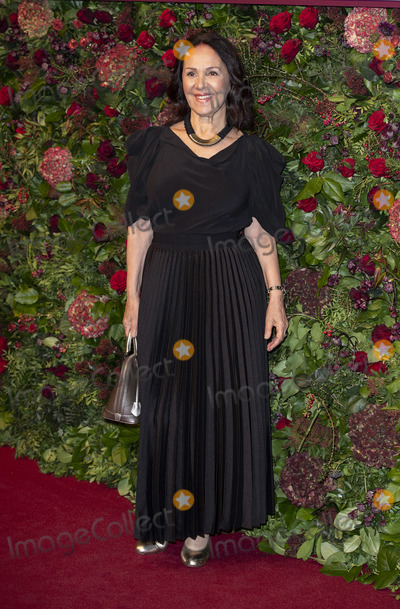 Arlene Phillip Photo - London UK Arlene Phillip  at the 65th Evening Standard Theatre Awards London Coliseum London England on the 24tht November 2019Ref LMK386-J5854-251119Gary MitchellLandmark MediaWWWLMKMEDIACOM