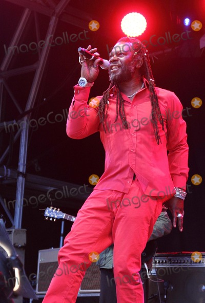 Photos From The Love Luton Festival