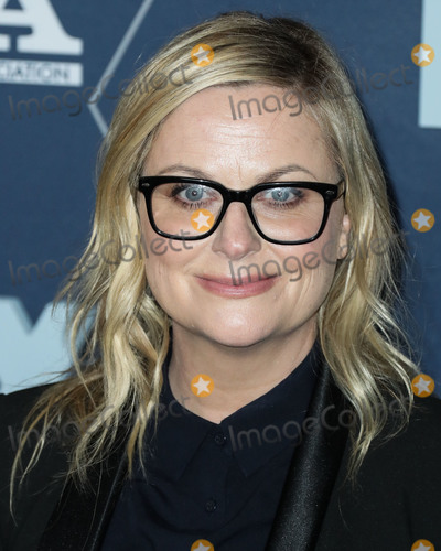 Amy Poehler Photo - PASADENA LOS ANGELES CALIFORNIA USA - JANUARY 07 Amy Poehler arrives at the FOX Winter TCA 2020 All-Star Party held at The Langham Huntington Hotel on January 7 2020 in Pasadena Los Angeles California United States (Photo by Xavier CollinImage Press Agency)