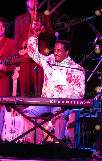 Ike Turner Photo - Ike Turner Performs at Montecarlo Sporting Club  Montecarlo 07042004 Ruscello RobertowmplapresseGlobe Photosinc