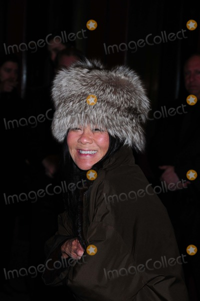 Helen Shifter Photo - Helen Shifter Screening of No Strings Attached Tribeca Grand Hotel New York NY 01-20-2011 photo by Ken Babolcsay - Ipol-globe Photos Inc
