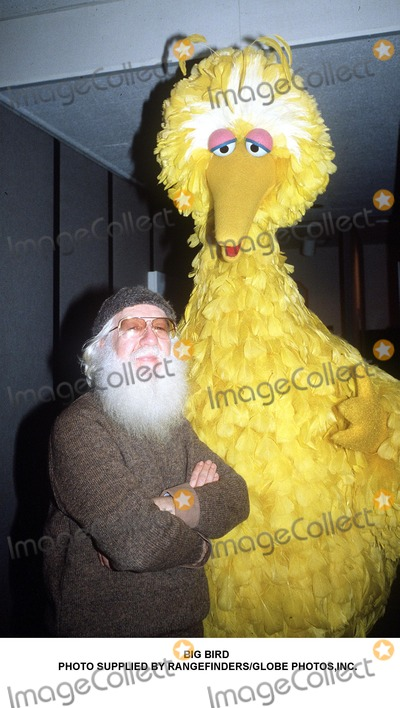 Big Bird Photo - Big Bird Photo Supplied by RangefindersGlobe Photosinc