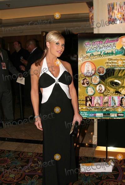 Ashton Moore Photo - 10th Annual Adult Nightclub and Erotic Dancers Awards Orleans Hotel Las Vegas Nevada 08-29-2007 Photo by Ed Geller-Globe Photos Inc 2007 Ashton Moore
