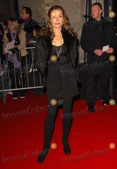 Amanda Donohoe Photo - 002107 British Independent Film Awards 2007-arrivals-the Roundhouse Camden London United Kingdom  Photo by Henry Davenport-richfoto-Globe Photos Amanda Donohoe