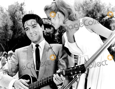 Ann-Margret Photo - Elvis Presley and Ann-margret in Viva Las Vegas 1964 1960s Supplied by Globe Photos Inc