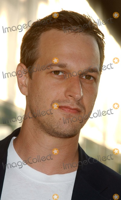 Josh Charles Photo - Before Sunset Los Angeles Premiere at the Los Angeles Film Festival at the Arclight Theatre in Hollywood California 06232004 Photo by Miranda ShenGlobe Photos Inc 2004 Josh Charles